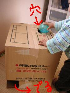 ダンボールで手作りおもちゃボール落としで遊ぶ一歳児