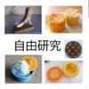 夏休み自由研究小学生